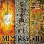 Meshuggah: Destroy. Erase. Improve