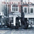Angel Blake: The descended