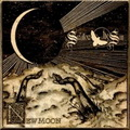 Swallow The Sun: New moon