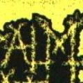 Napalm Death: