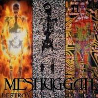2. Meshuggah: Destroy, erase, improve