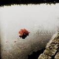 Acacia: Tills döden skiljer oss åt