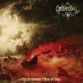 Netherbird: The ferocious tides of fate
